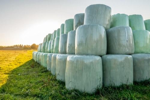 Sammlung landwirtschaftlicher Folien
