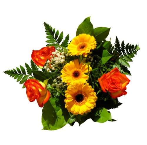 Regensburger Floristen zeigen Blumentrends zum Muttertag
