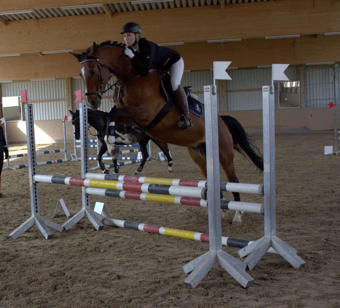 Pferdefreunde Gemling erfreut über große Teilnehmerzahl