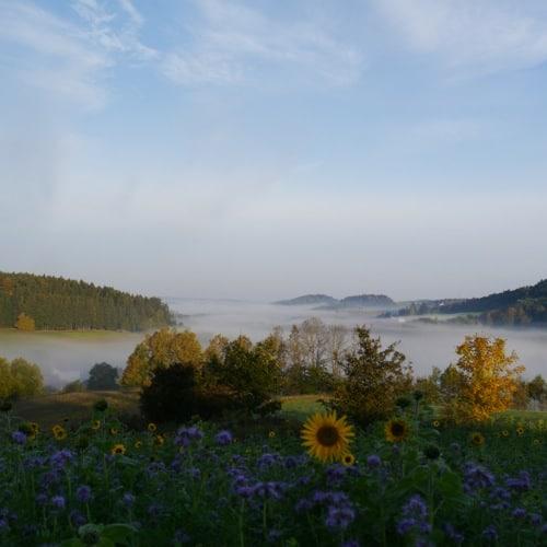 Regensburg Land: Musikalische Wanderung in Frauenzell