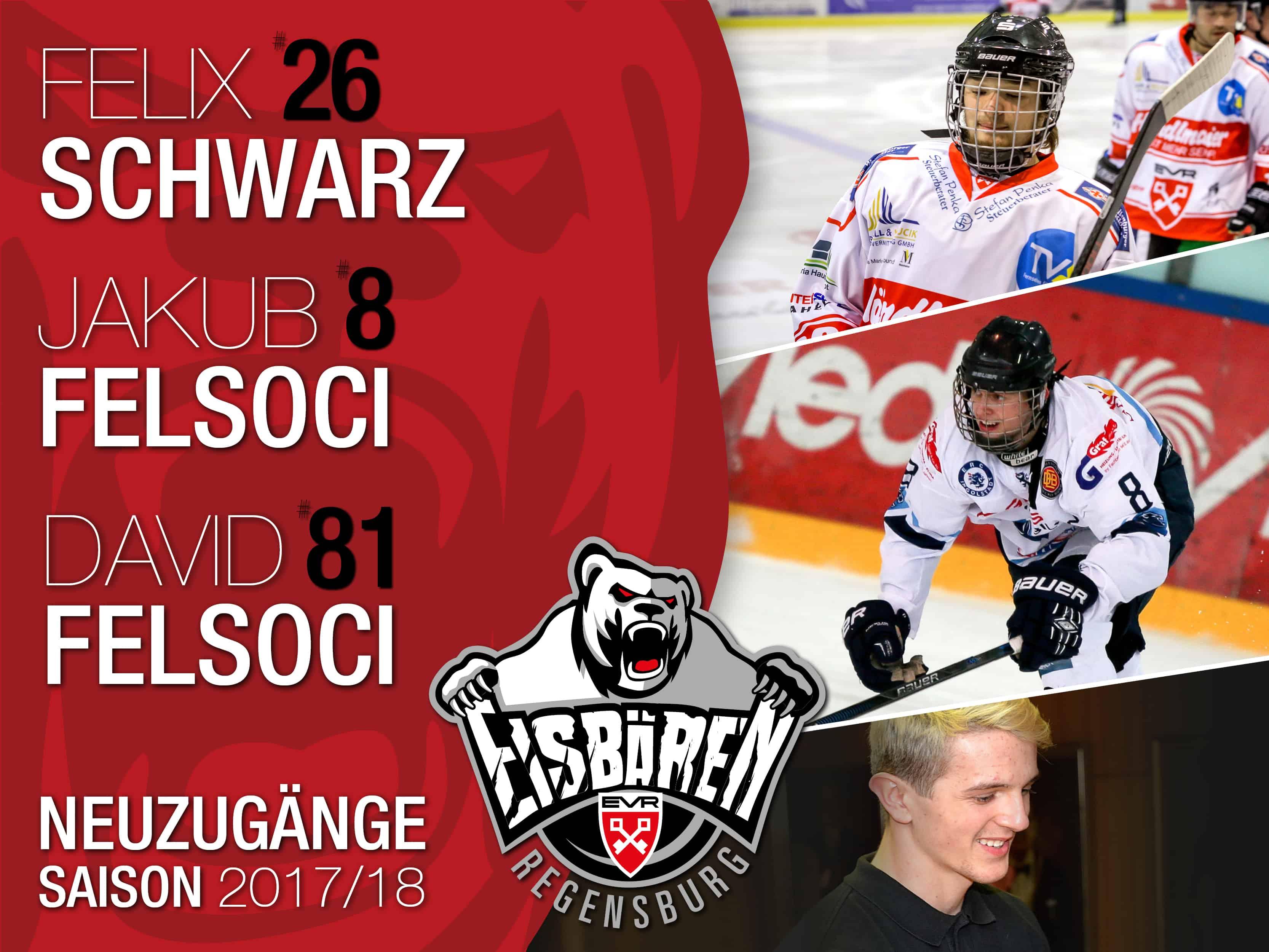 Drei Youngster kompletieren den Kader der Eisbären Regensburg