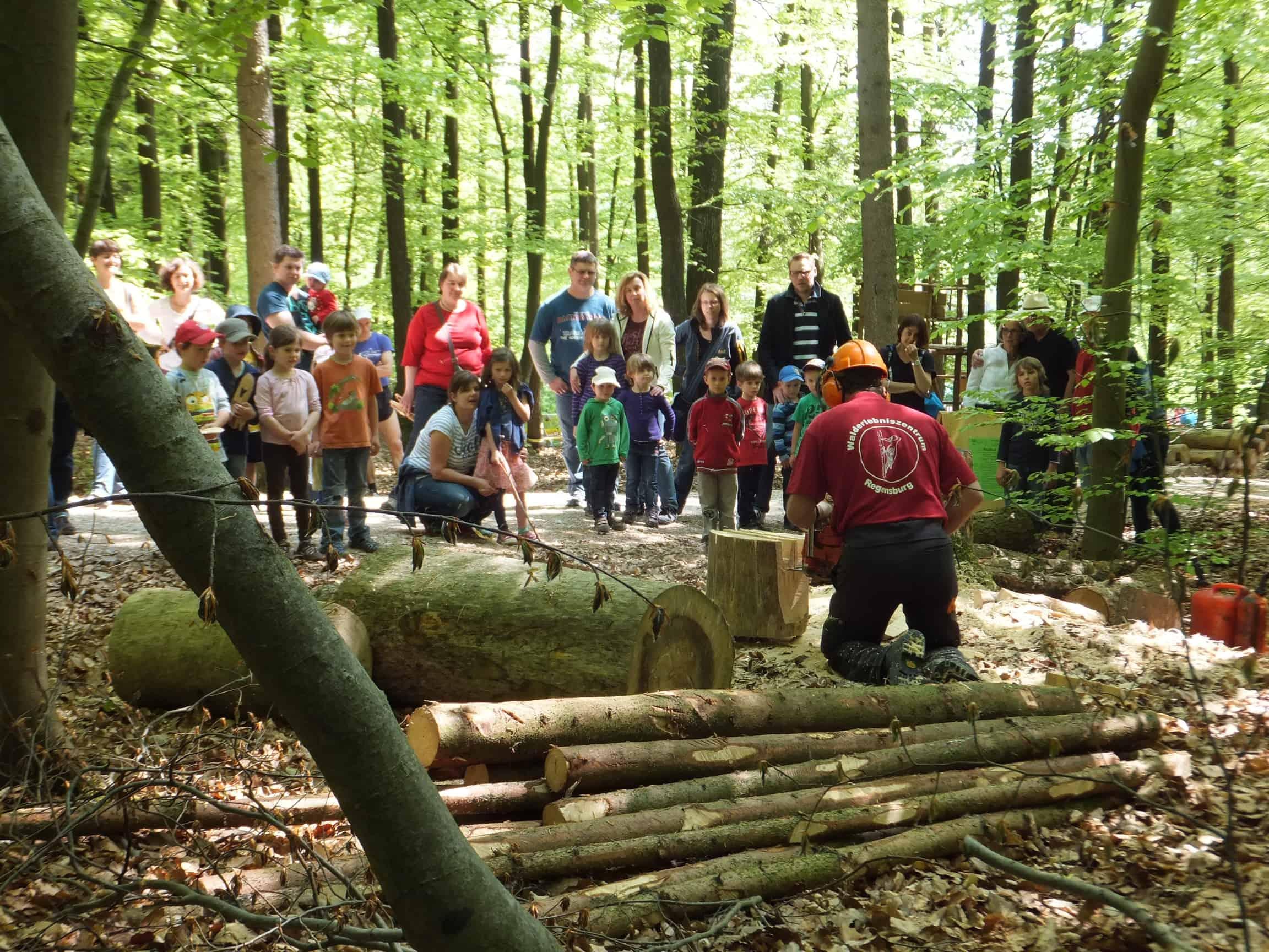 Am Sonntag: Großes Waldfest am Walderlebniszentrum Sinzing