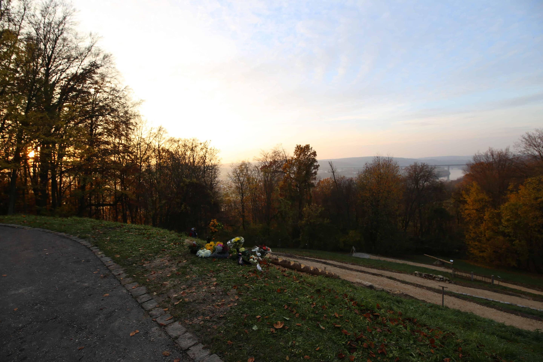 Trauerwald in Pentling bietet Verstorbenen einen würdigen Platz für ihre letzte Ruhe