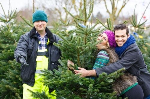 Bei Horst Niesner kaufen Regensburger Ihre Weihnachtsbäume