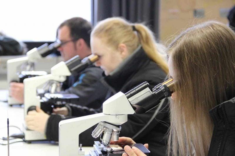 Berufsinfotag: Eckert Schulen öffnen ihre Labore am Campus Regenstauf