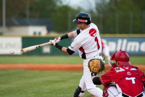 Buchbinder Legionäre: Regensburger Baseball vor Heimdebüt gegen Mannheim Tornados