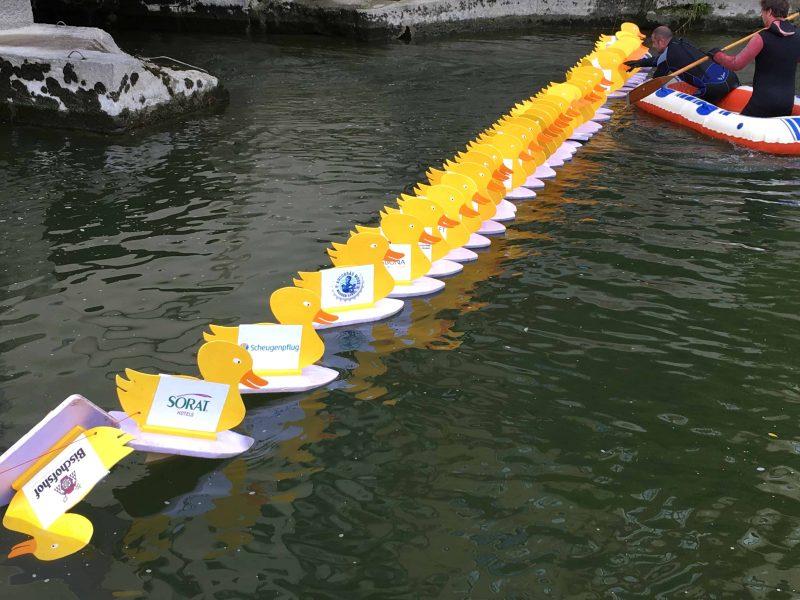 Auf die Ente, fertig, los! 2. Regensburger Entenrennen am 16. September / Erlös für St. Leonhard