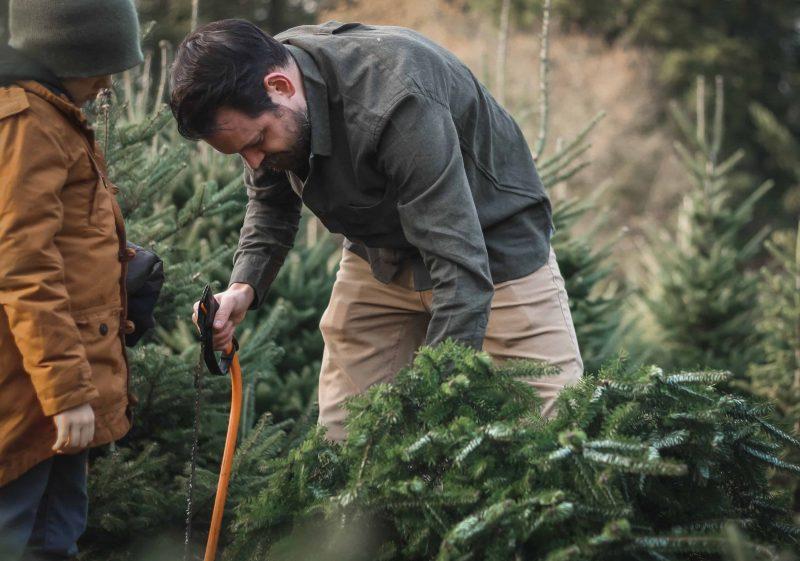 Der perfekte Weihnachtsbaum Sehr große Auswahl auf dem Christbaumhof Gierstorfer