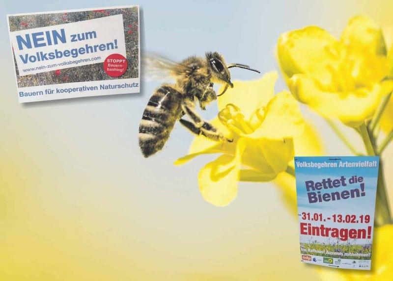 """""""Rettet die Bienen!"""": Ein kontroverses Volksbegehren Bauernverband warnt vor den Folgen für Umwelt- und Naturschutz"""