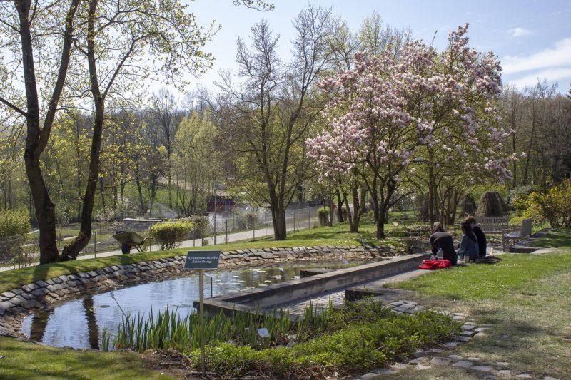 Im Botanischen Garten lassen sich ganz besondere Schätze entdecken Wie aus einer anderen Welt ...