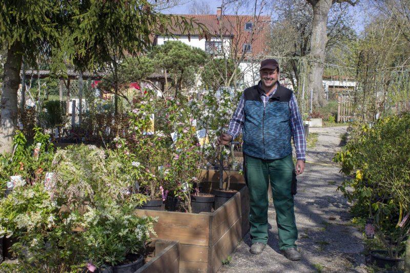Gartenparadies Delazer in Regensburg ... und alles wird wieder grün