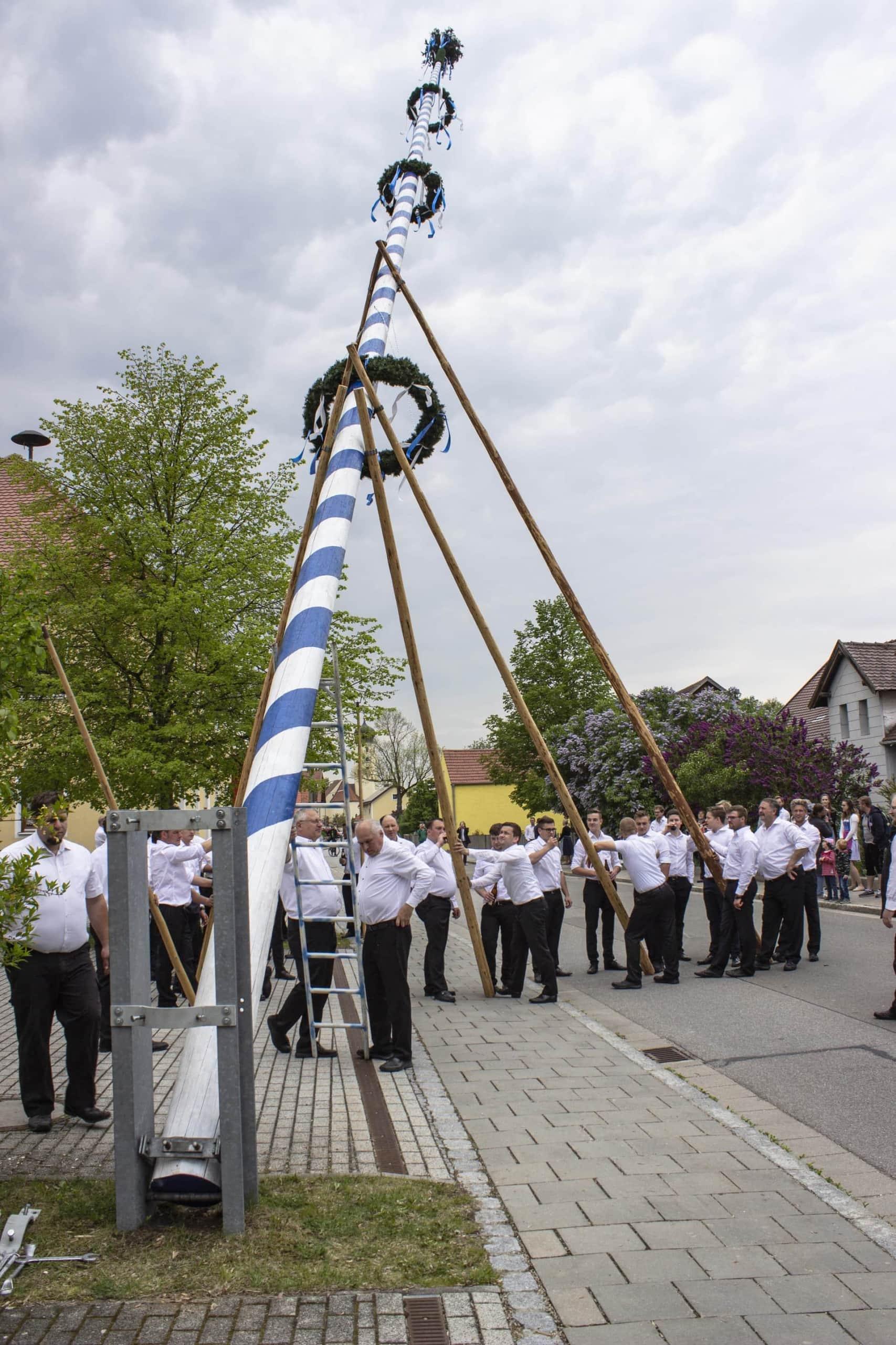 In Friesheim bei Barbing wird wie in vielen anderen Gemeinden der bayerische Brauch als Tradition gelebt Der Maibaum bringt das ganze Dorf zusammen
