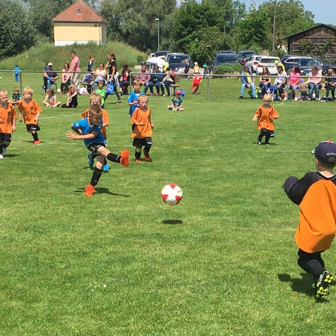 Blizz Leserreporter Fussballfest für Kinder beim SV Sallern