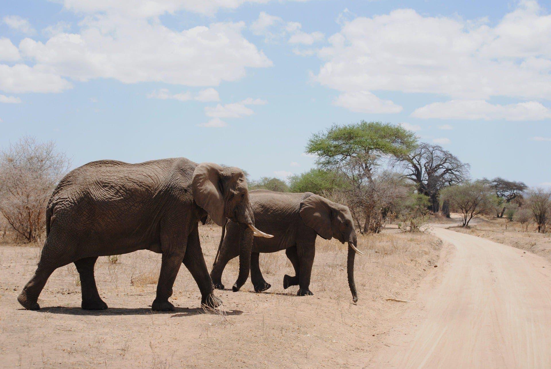 Mit B.E.S.T. Reisebüro Stadler nach Namibia Namibia, Land der Kontraste