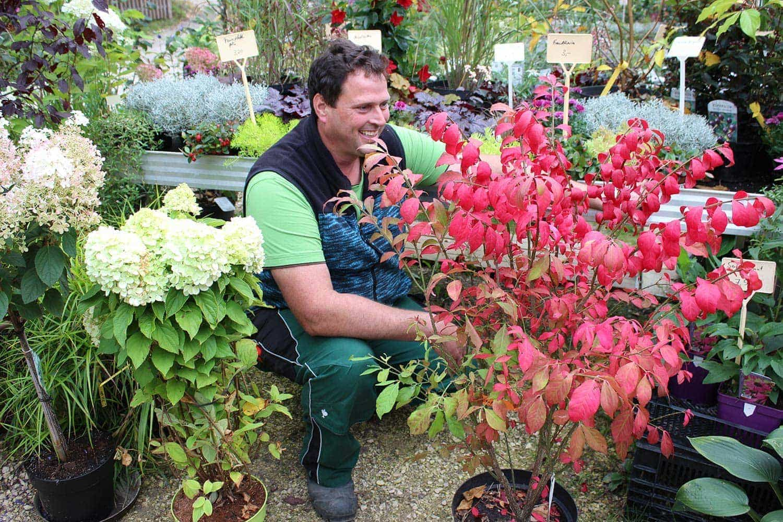 Garten- und Landschaftsbaumeister Stefan Delazer vom Gartenparadies Regensburg gibt wertvolle Tipps So machst du Garten und Balkon winterfest