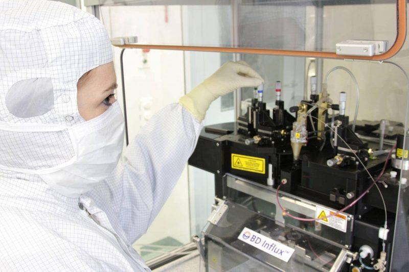 Neue Zelltherapie gegen Krebs Hoffnung für Patienten am Universitätsklinikum Regensburg