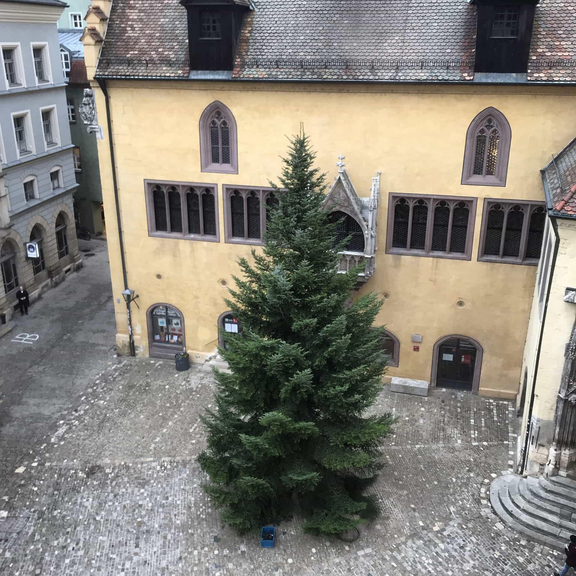 Oh, Tannenbaum auf dem Rathausplatz Zwölf-Meter-Tanne aus dem Thüringer Wald kann jetzt geschmückt werden