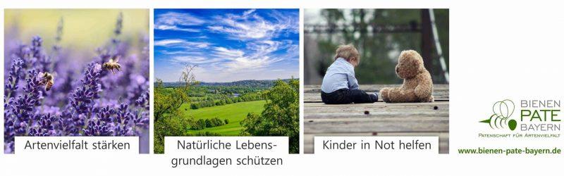 Blizz Leserreporter Bienen-Pate-Bayern veranstaltet Spendenwoche zu Gunsten von Sternstunden e.V.