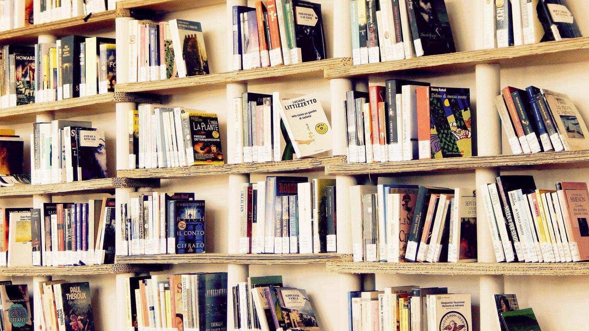 Schnäppchenjäger aufgepasst! Bücher-Flohmarkt in der Stadtbücherei am Haidplatz