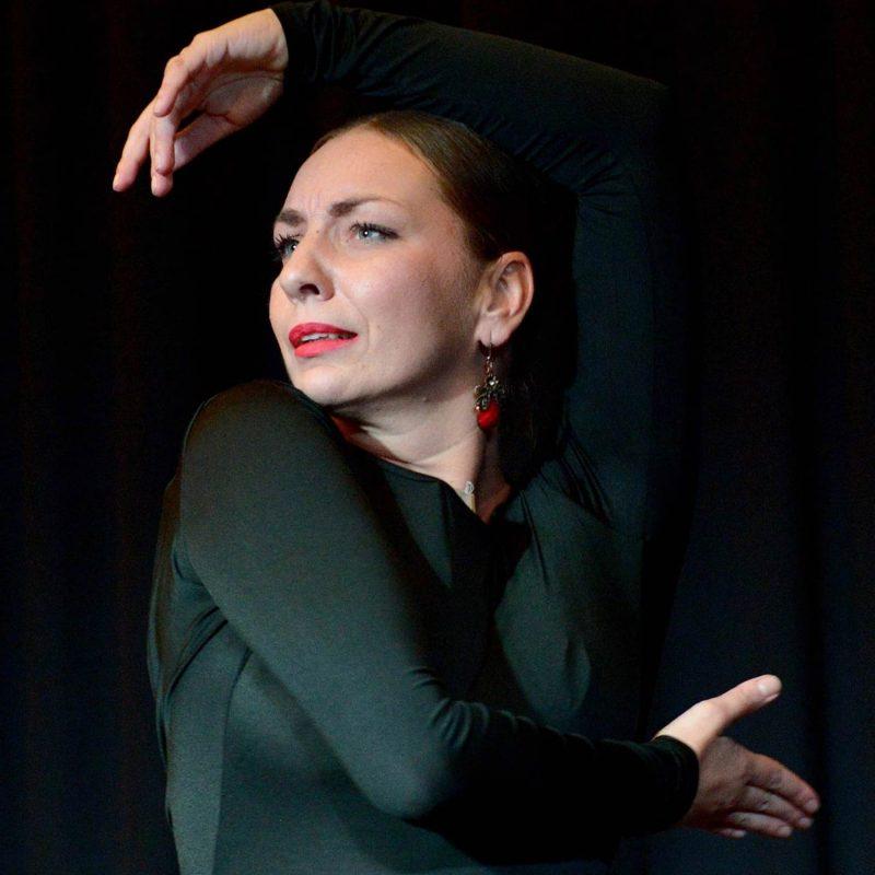 Von Schwanensee bis Flamenco Ballett-Tanz-Akademie (BTA) lehrt Spektrum des Tanzens