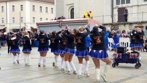 Lari-Fari Faschingsgesellschaft aus Diesenbach