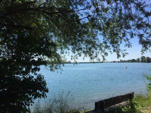 Landschaftliche Vielfalt am Wasser