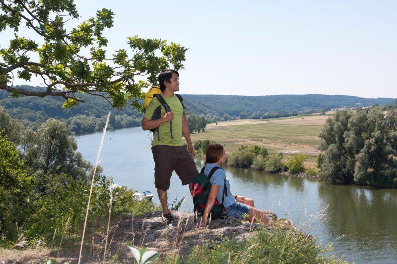 Paradies für seltene Pflanzen und Tiere Üppige Flora und Fauna: Naturschutzgebiete in Stadt und Landkreis Regensburg