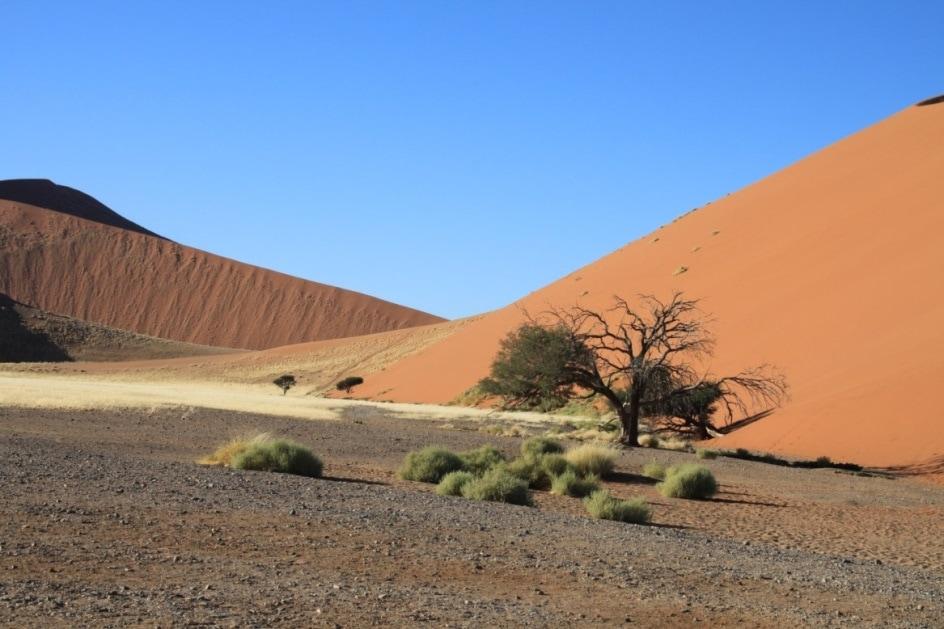 Die Weiten Namibias Das afrikanische Land mit Stritzke-Reisen entdecken