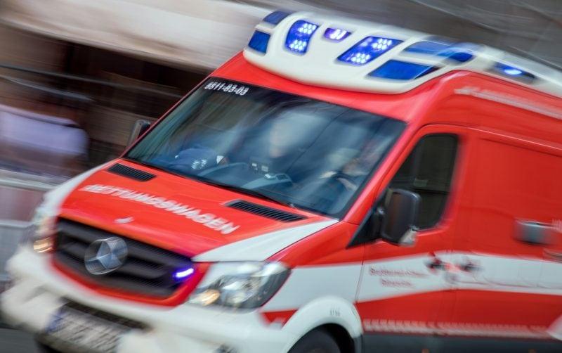 Autofahrerin bei Unfall schwer verletzt Pferde ausgebüxt
