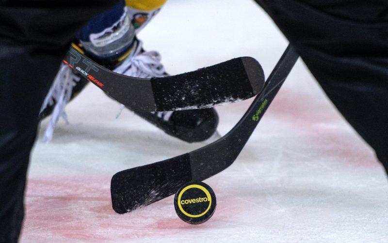 Deutschen Eishockey Liga
