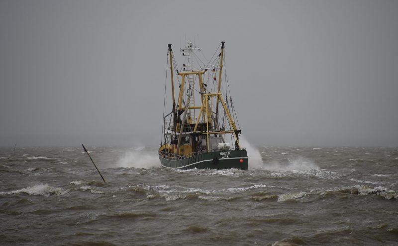 Fischerei in der Nordsee