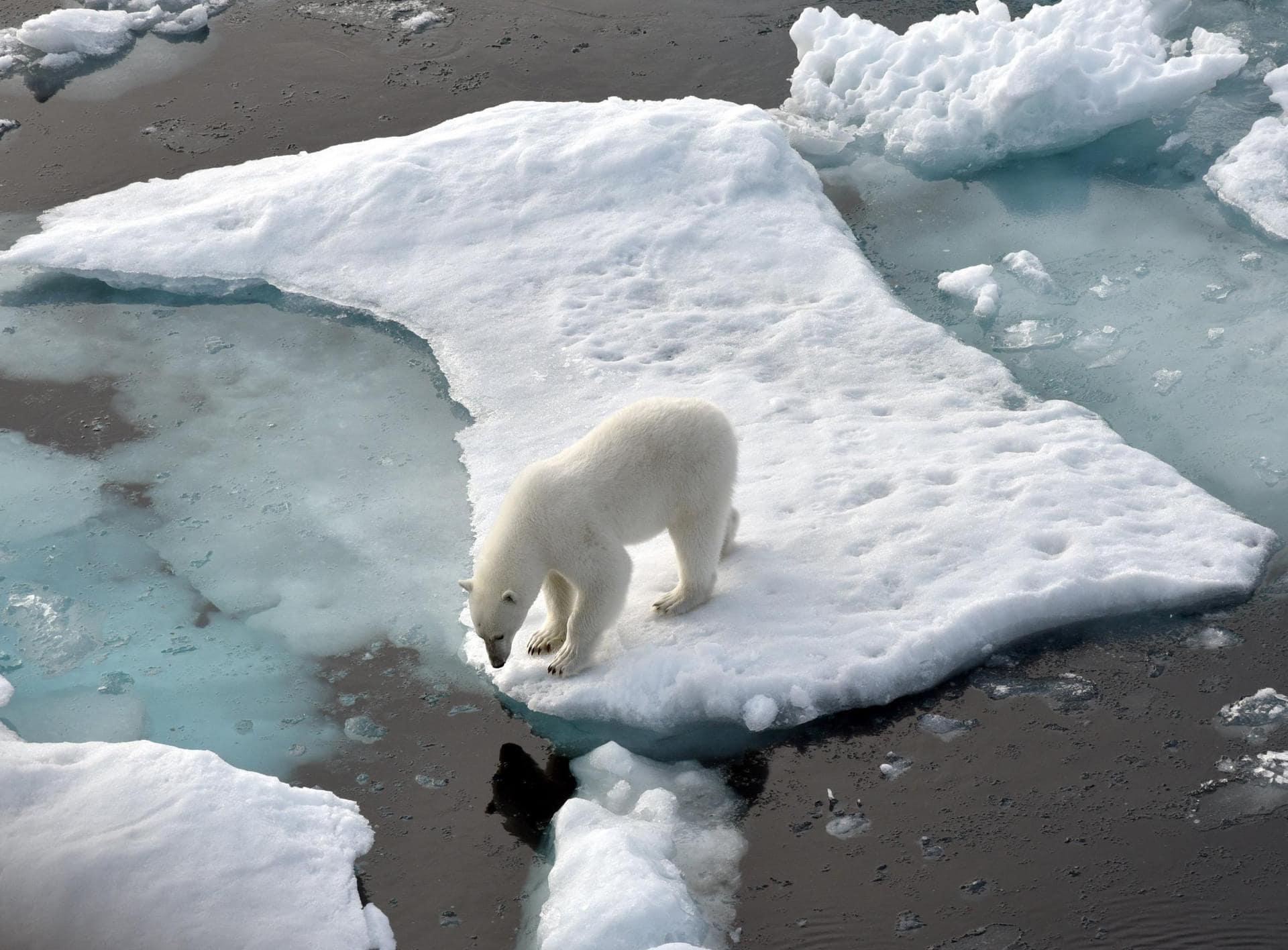 Guterres fordert Ausrufung des «Klimanotfalls» Fünf Jahre Paris-Abkommens
