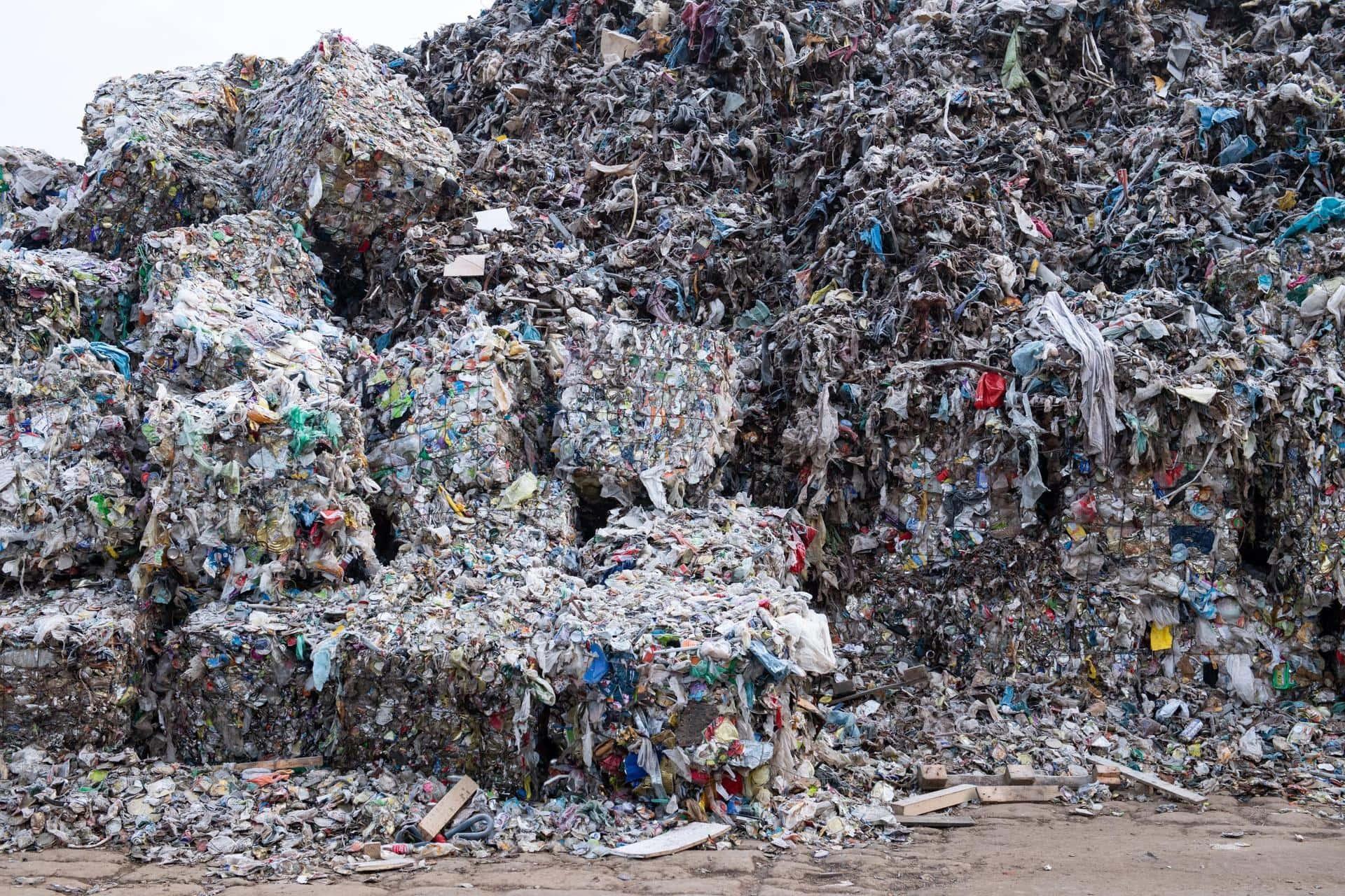 Von Menschen produzierte Masse übersteigt weltweite Biomasse