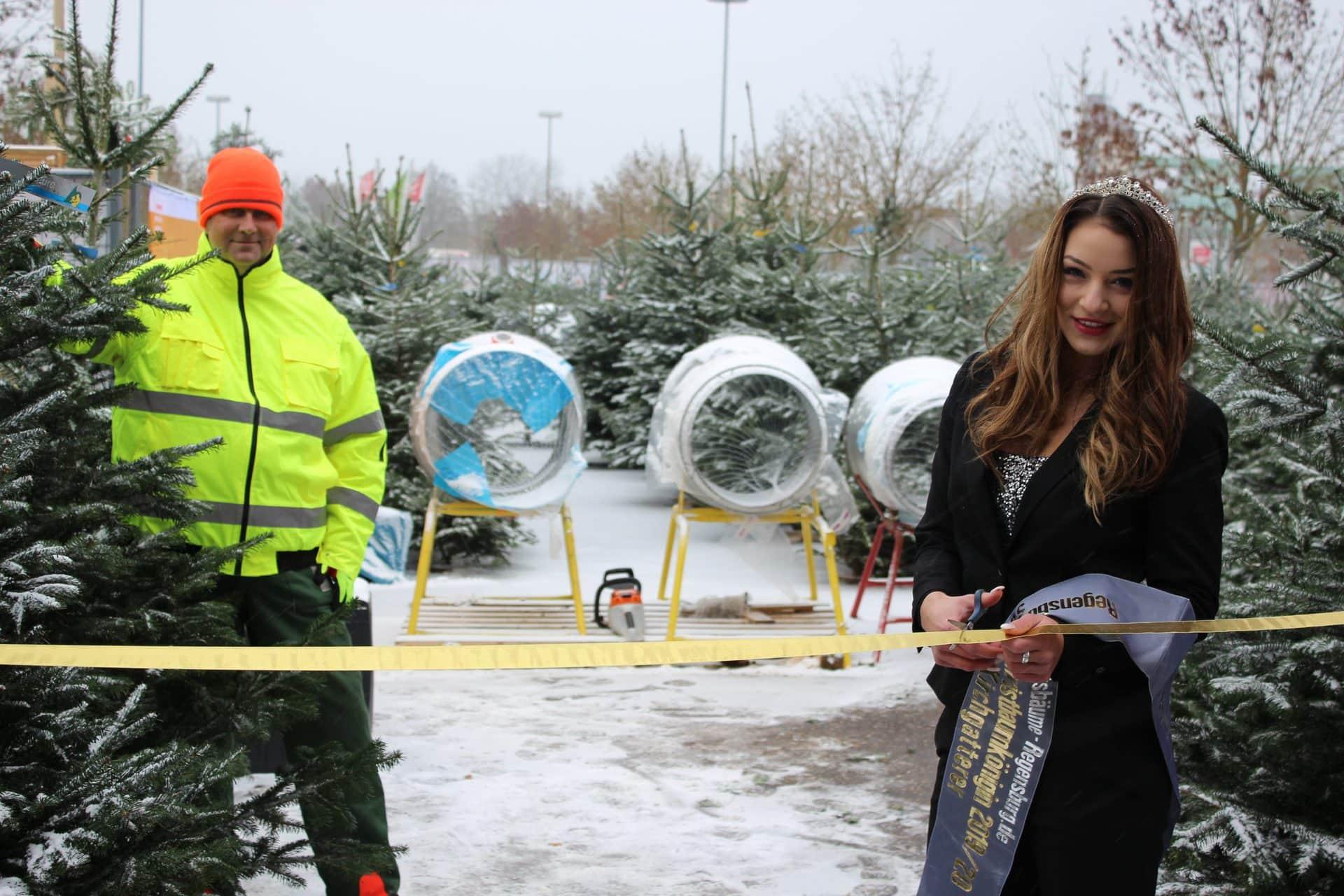 Kein Weihnachten ohne Baum Prachtvolle Nordmanntannen gibt es bei Horst Niesner in Regensburg