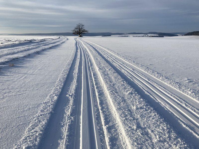 Wintersport dahoam auf den Winzerer Höhen Stadt Regensburg, Markt Lappersdorf und Vereine kümmern sich um Langlaufloipen