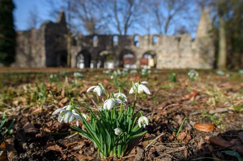 Frühlingserwachen im Jerichower Land