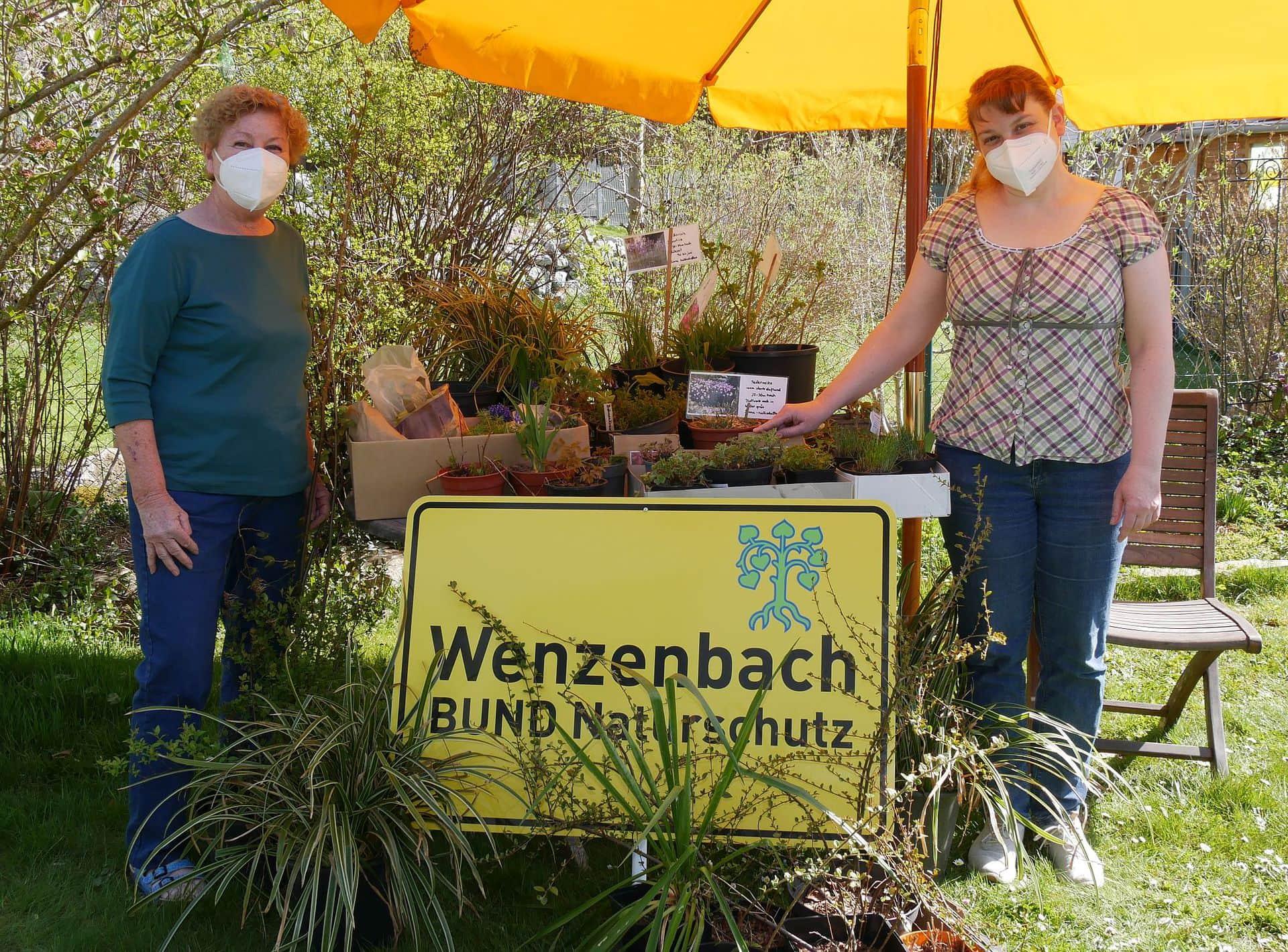 Spende statt Tauschbörse BN Wenzenbach spendet Pflanzen an das Tageszentrum Café Insel der Diakonie Regensburg