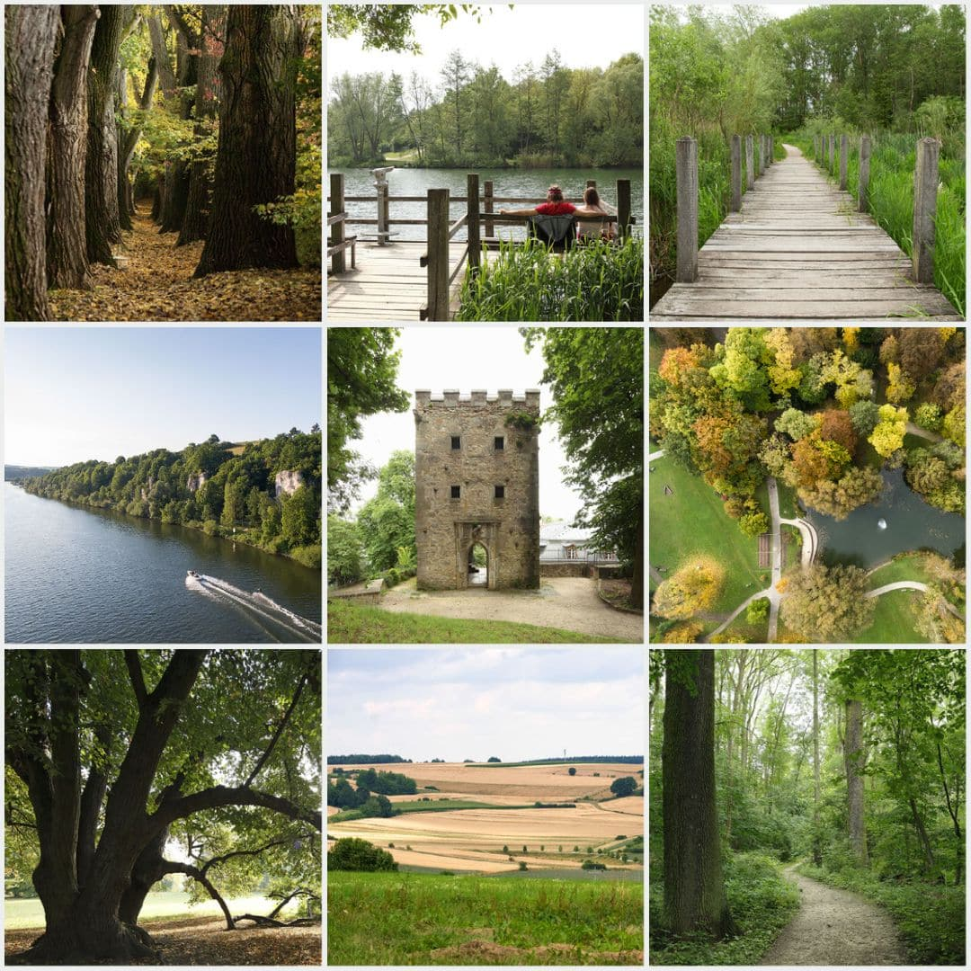 Grünes Regensburg entdecken Online-Übersicht der größten und schönsten Parks der Stadt