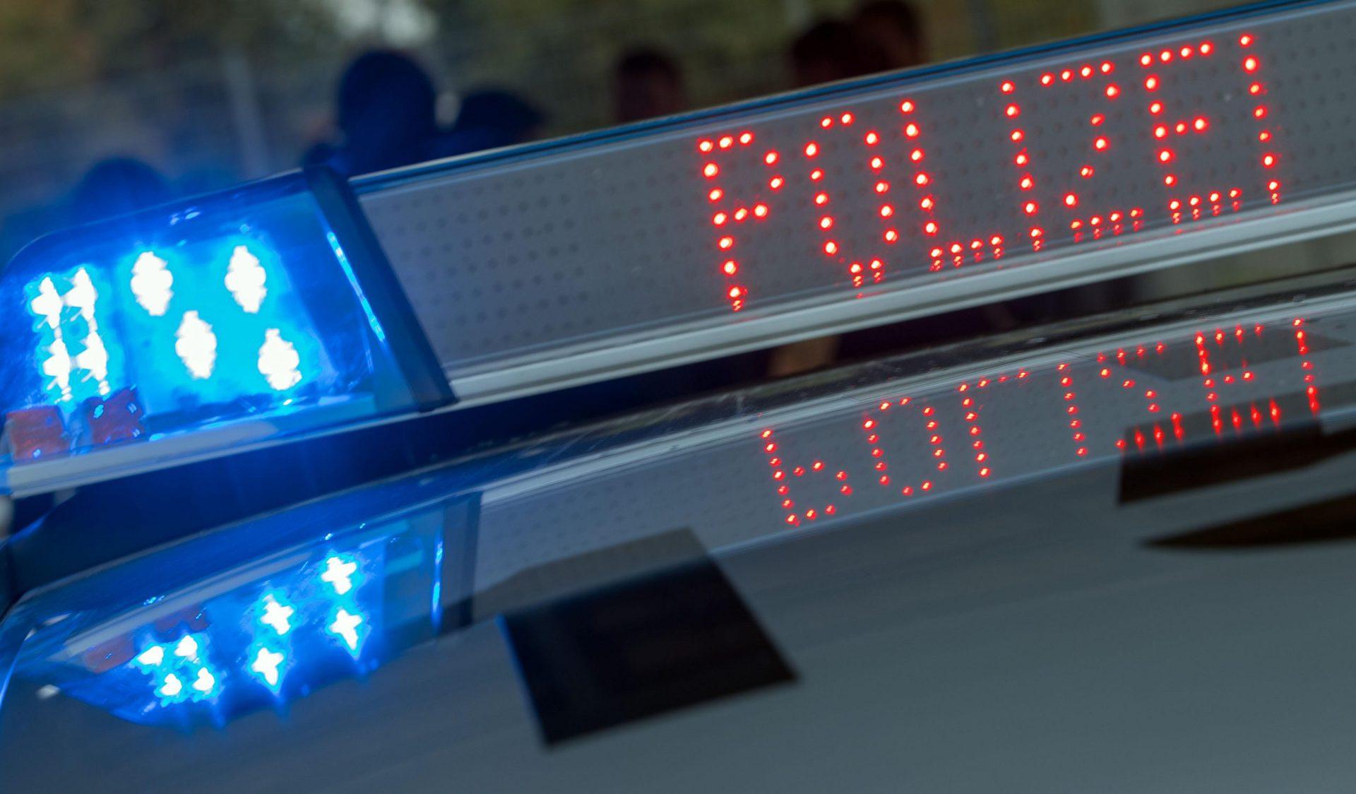 Schildkröten auf engstem Raum in Plastikwannen gehalten Polizei Regensburg