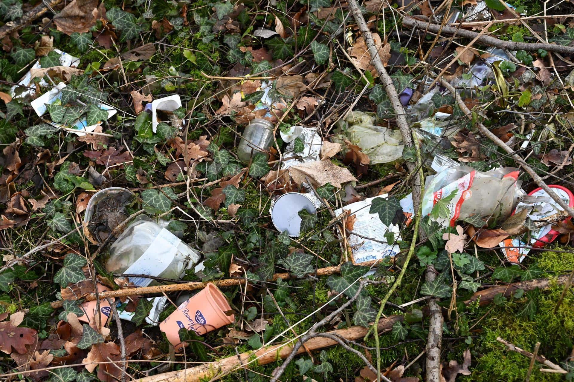 """In Bayerns Wäldern soll es weniger Plastik geben Kaniber: """"Wir stellen die Förderung von Kunststoffprodukten konsequent ein"""""""
