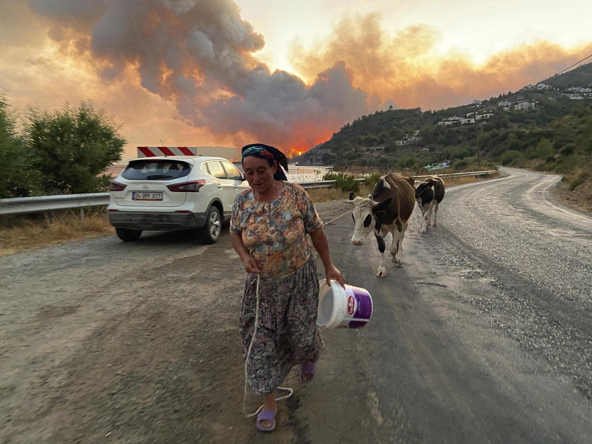 Extremwetter: Waldbrände in Südeuropa toben weiter