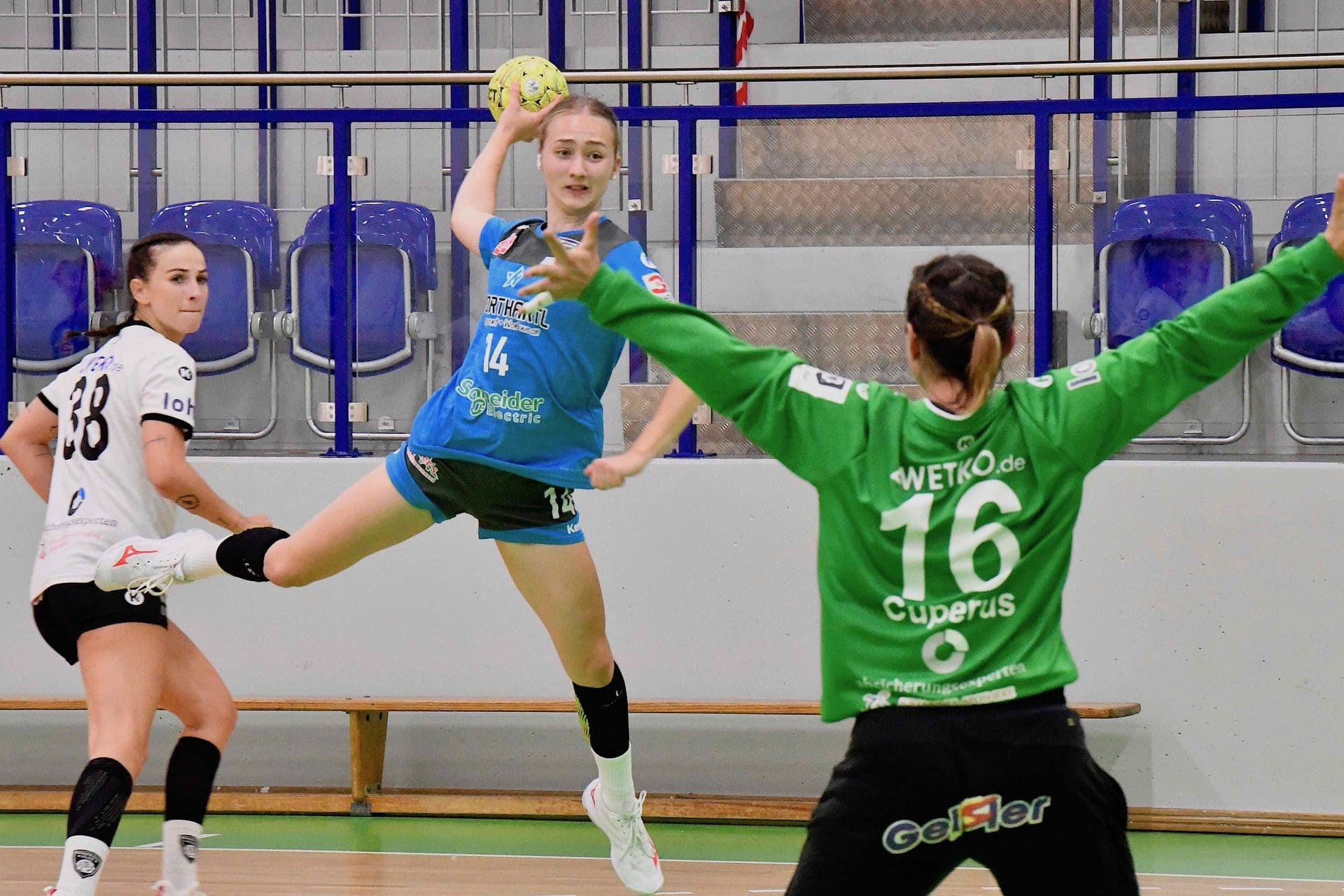 ESV 1927 Regensburg weiter ungeschlagen Vorbereitung auf die 2. Handball-Bundesliga